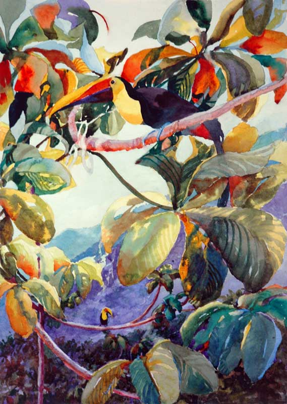 Finished painting, Toucan Fly, Jan Hart