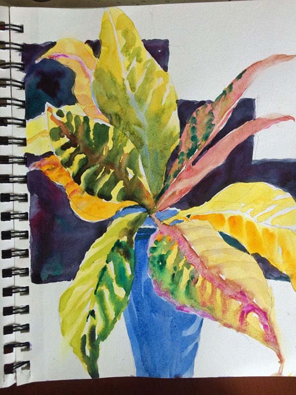 watercolor sketch - Croton Leaves in a Vase, JH
