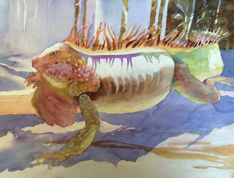 Iguana in Light, Unfinished - watercolor, Jan Hart