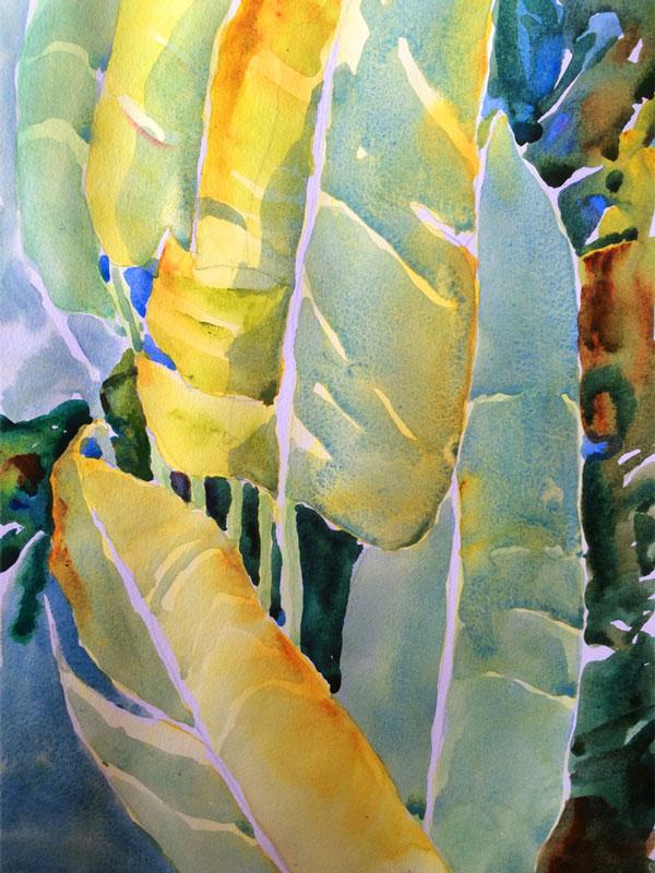 Banana Leaves at Papas - watercolor sketch, Jan Hart 2016