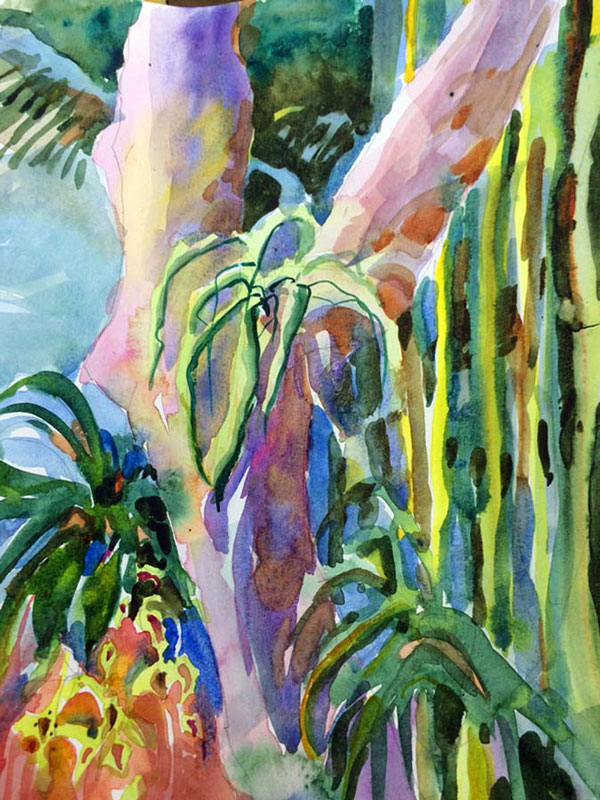 Watercolor painting by Jan Hart - The Mango Tree