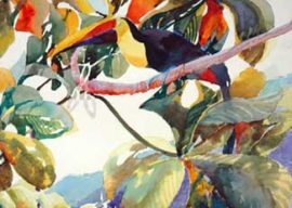 How I Work Through Painting's Challenges – Toucan Fly, 2005